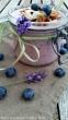 Frozen Blueberry- Joghurt